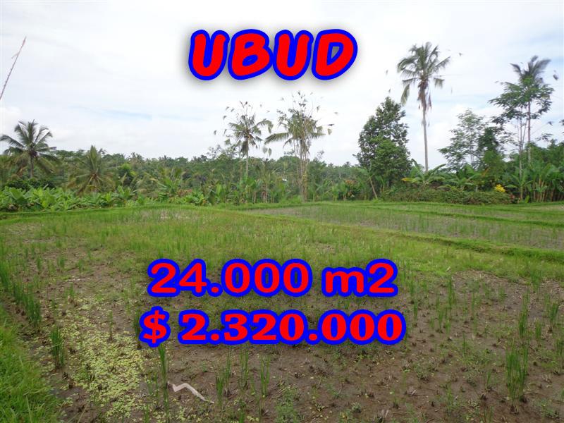Land in Ubud for sale, Attractive view in Ubud Payangan Bali – TJUB262