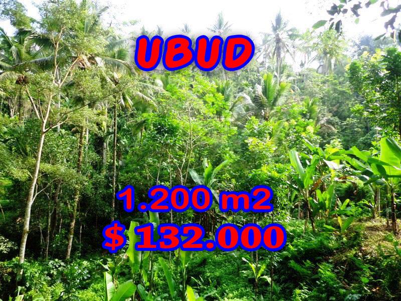 Land for sale in Ubud, Fantastic view in Ubud Tegalalang Bali – TJUB265
