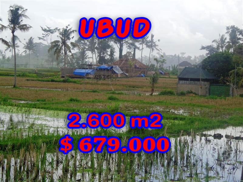 Amazing Property in Bali, Land for sale in Ubud Bali – 2.600 sqm @ $ 261