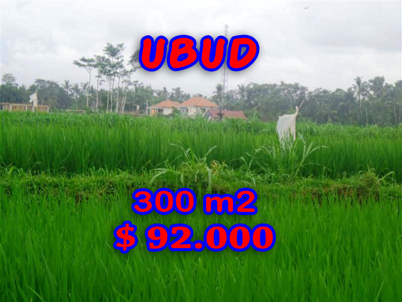 Land for sale Ubud Bali Exotic rice paddy view in Ubud Center – TJUB282