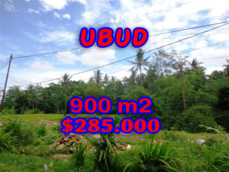 Incredible Property in Bali, Land in Ubud Bali for sale – 900 sqm @ $ 317