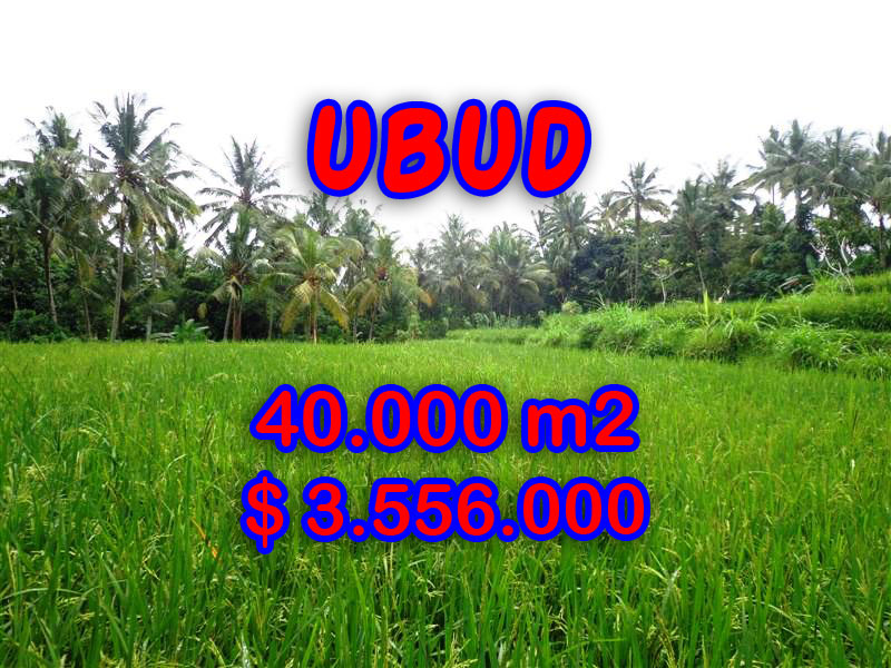 Land for sale in Ubud, Exotic view in Ubud Tampak siring Bali – TJUB269
