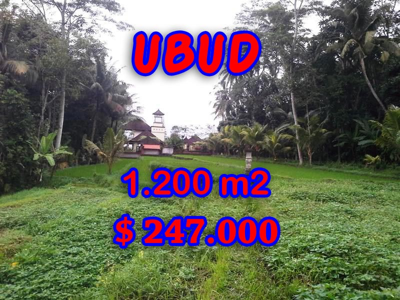 Land in Ubud for sale, Outstanding view in Ubud Tegalalang Bali – TJUB297