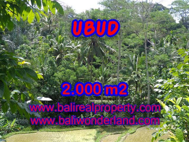 Land for sale in Ubud Bali, Unbelievable view in Ubud Tegalalang – TJUB359