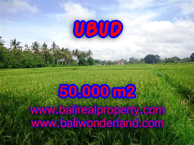 Land in Ubud Bali for sale, Outstanding view in Central Ubud – TJUB351