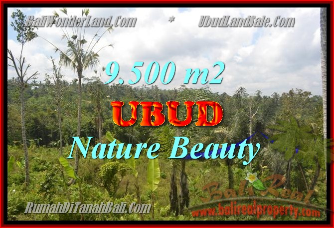 Land in Bali for sale, great view in Ubud Bali – TJUB430