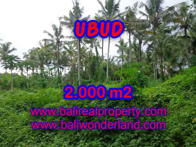 Fantastic Land for sale in Ubud Bali, garden view by the small river in Ubud Center– TJUB397
