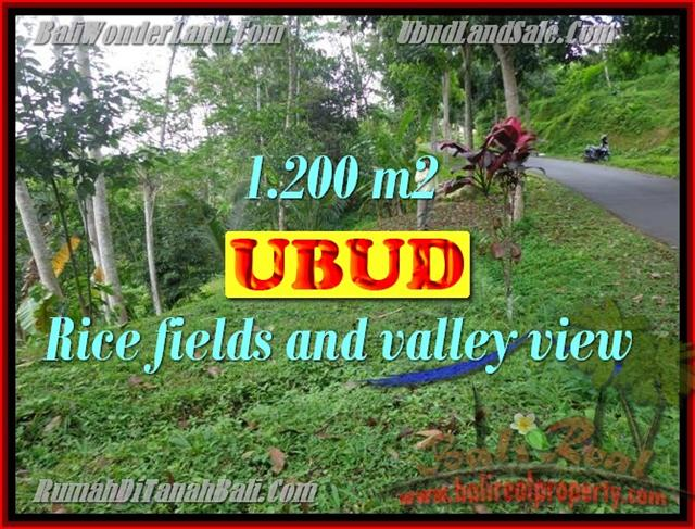 Fantastic Land for sale in Bali, Rice fields and valley view in Ubud Tegalalang– TJUB422