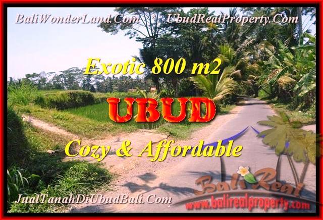FOR SALE LAND IN UBUD BALI TJUB457