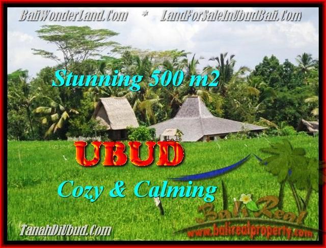 FOR SALE Beautiful PROPERTY 500 m2 LAND IN UBUD TJUB459