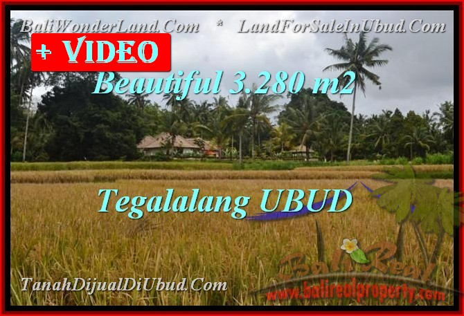 FOR SALE Beautiful 3,280 m2 LAND IN Ubud Tegalalang TJUB463