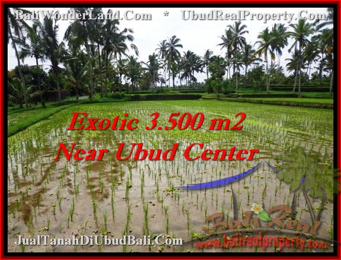 FOR SALE Magnificent LAND IN Ubud Tegalalang TJUB477