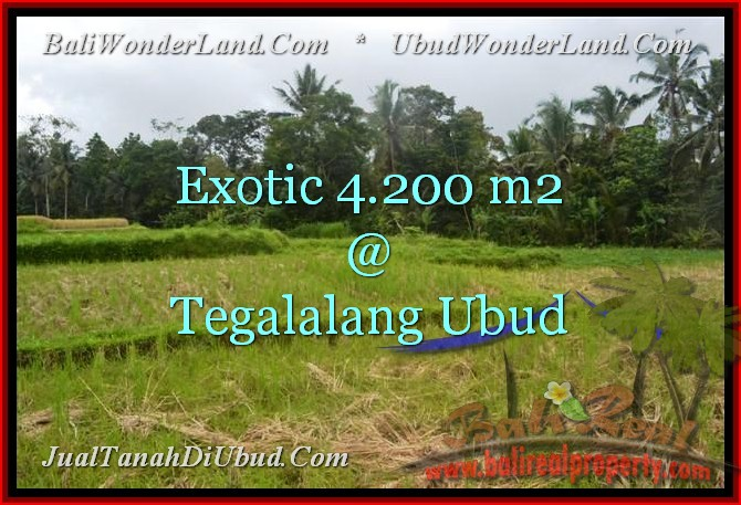 FOR SALE Magnificent PROPERTY 4,200 m2 LAND IN UBUD BALI TJUB461
