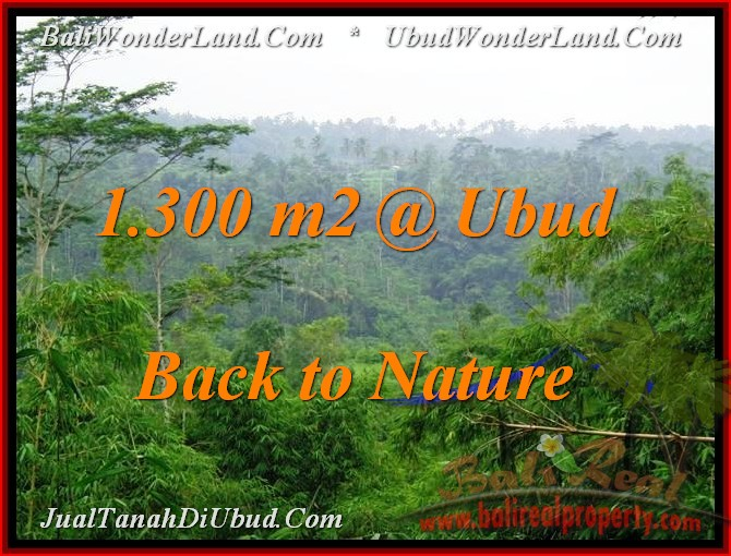 Beautiful PROPERTY UBUD LAND FOR SALE TJUB481