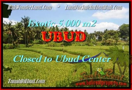 Affordable PROPERTY Sentral Ubud BALI LAND FOR SALE TJUB449
