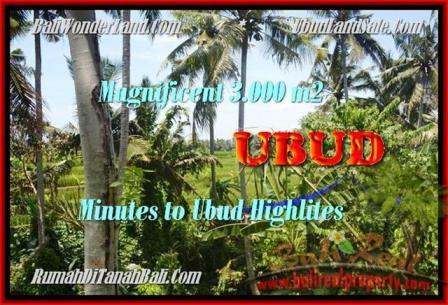Beautiful Sentral Ubud BALI LAND FOR SALE TJUB450