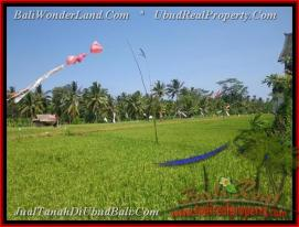 Beautiful PROPERTY LAND FOR SALE IN UBUD TJUB447