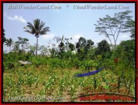 Exotic PROPERTY 2.670 m2 LAND SALE IN UBUD TJUB451