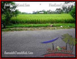 FOR SALE Affordable PROPERTY 2,000 m2 LAND IN UBUD BALI TJUB485