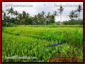 Magnificent PROPERTY 2,000 m2 LAND IN Ubud Pejeng FOR SALE TJUB485