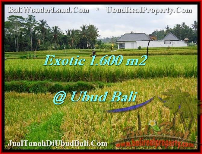 Magnificent UBUD BALI 1,600 m2 LAND FOR SALE TJUB487