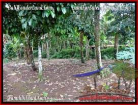 Magnificent PROPERTY 1,500 m2 LAND IN Ubud Tegalalang FOR SALE TJUB489