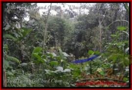 FOR SALE Beautiful LAND IN Ubud Payangan BALI TJUB431