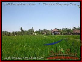Beautiful PROPERTY LAND IN UBUD FOR SALE TJUB437