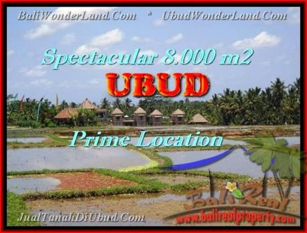 FOR SALE Magnificent 8.000 m2 LAND IN UBUD TJUB441