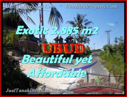 FOR SALE Magnificent 2.885 m2 LAND IN UBUD TJUB442