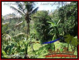 Magnificent UBUD BALI LAND FOR SALE TJUB503