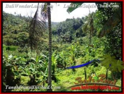 FOR SALE Magnificent PROPERTY 1,500 m2 LAND IN Ubud Tegalalang BALI TJUB503