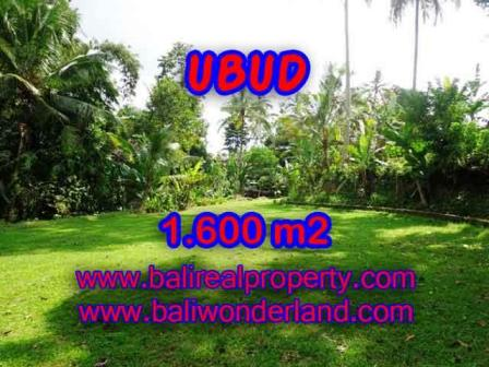 FOR SALE Affordable PROPERTY 1,600 m2 LAND IN UBUD BALI TJUB416