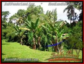 Affordable LAND SALE IN Sentral Ubud BALI TJUB416