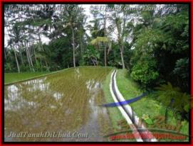 FOR SALE Magnificent LAND IN Ubud Tegalalang BALI TJUB421