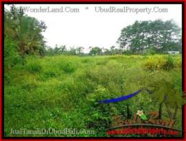 FOR SALE Exotic LAND IN Sentral Ubud BALI TJUB492