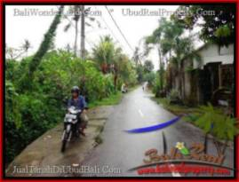Sentral Ubud BALI LAND FOR SALE TJUB492
