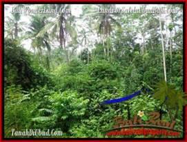 Ubud Tampak Siring BALI LAND FOR SALE TJUB493