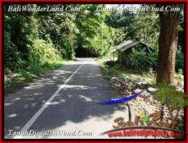 Affordable 1,500 m2 LAND IN UBUD BALI FOR SALE TJUB503