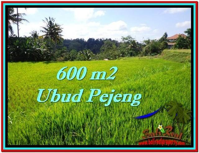 Affordable PROPERTY LAND FOR SALE IN Ubud Tampak Siring TJUB513