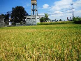 Affordable PROPERTY 1,500 m2 LAND FOR SALE IN Sentral Ubud TJUB508