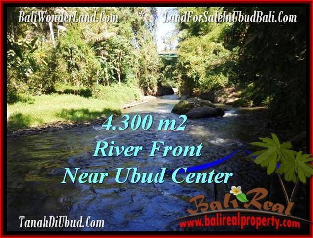 Affordable PROPERTY LAND IN UBUD FOR SALE TJUB499