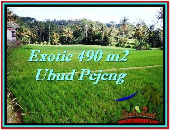 Magnificent 490 m2 LAND SALE IN UBUD BALI TJUB512