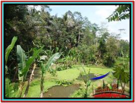 Magnificent LAND FOR SALE IN UBUD TJUB519