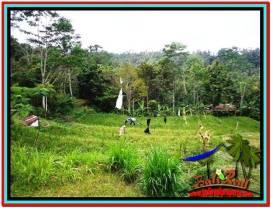 Exotic PROPERTY LAND SALE IN UBUD TJUB521