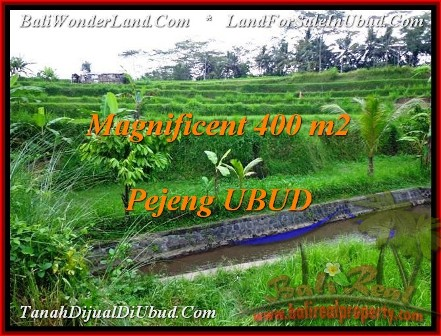 Affordable PROPERTY 400 m2 LAND FOR SALE IN Ubud Pejeng TJUB483