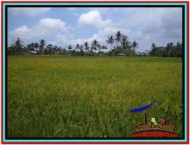 Beautiful PROPERTY LAND FOR SALE IN UBUD BALI TJUB522
