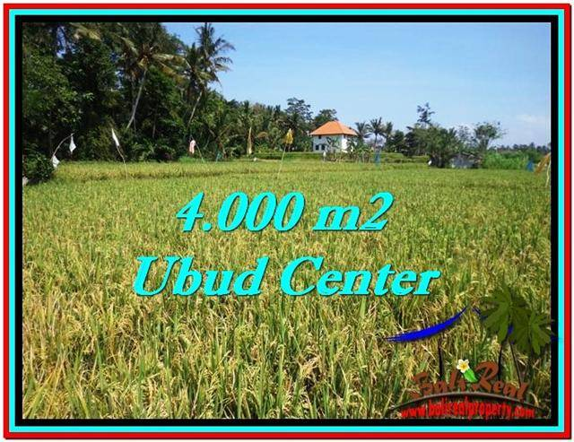 Exotic 4,000 m2 LAND SALE IN UBUD BALI TJUB527