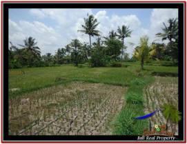 Magnificent PROPERTY 940 m2 LAND SALE IN Ubud Tampak Siring TJUB531