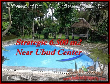 Magnificent PROPERTY 6,500 m2 LAND IN Ubud Tegalalang FOR SALE TJUB479